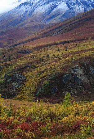 Yukon2013
