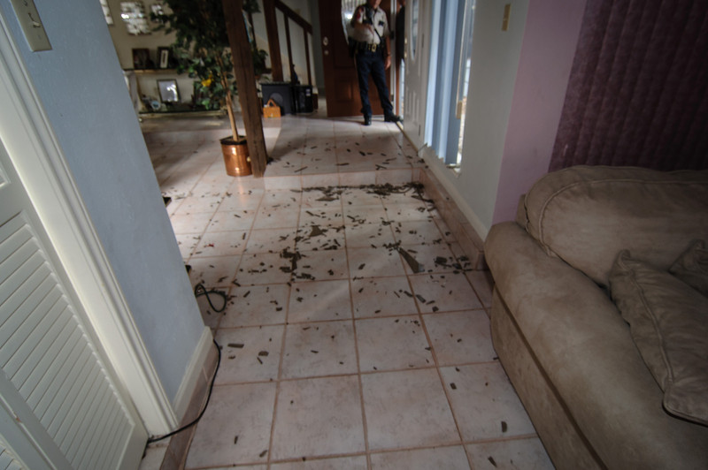 Subirats Home Deer damage-3967.jpg