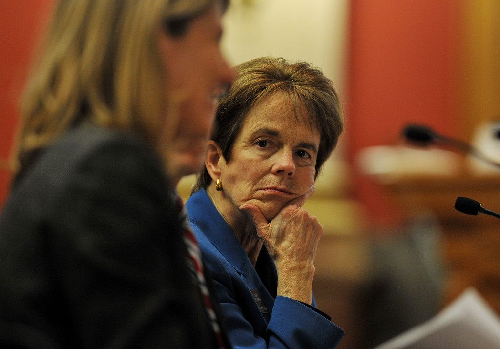 . DENVER, CO. - FEBRUARY 28: Rep. Sue Schafer, D-Wheat Ridge. right, and supporters are presenting Senate Bill 11, which would allow gay couples to form civil unions to the House Judiciary Committee. Denver, Colorado. (Photo By Hyoung Chang/The Denver Post)
