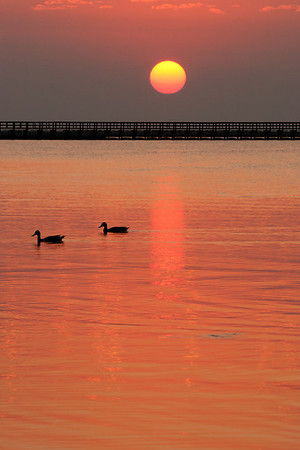 Rockport / Mustang Island State Park, TX 9/2011