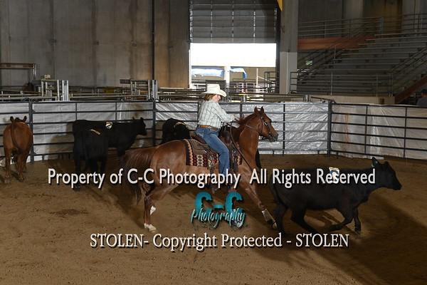 #11 RH Cheyenne WY 2019 RSNC