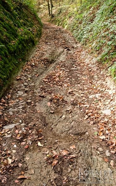 Trail Scar