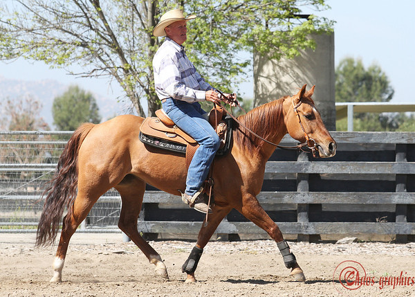 John Black: EXCA Obstacle Clinic, April 16, 2011