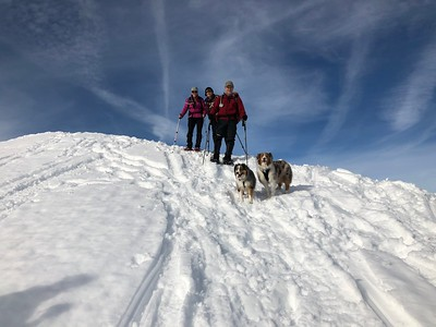 Hex Mountain Snowshoe - 1/26/19