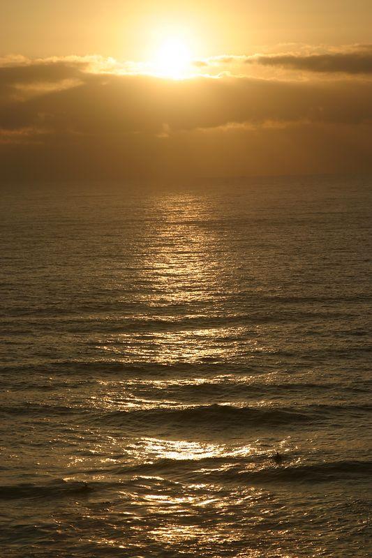 Oregon Coast 2004