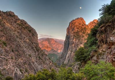 Random Shots in Kings Canyon