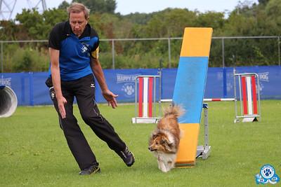 Onderlinge agilitywedstrijd 7 juli (2)