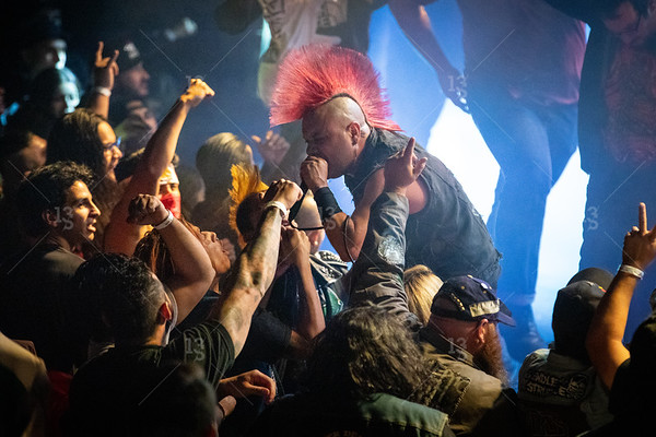 The Casualties - Gardent Amp 2019