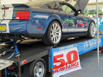 Mustang Week 13 Thursday