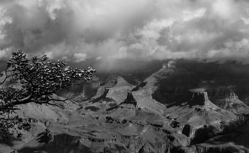 2017-03-21-Grand-Canyon-401.jpg