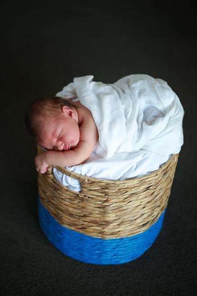 Pippa 10.jpg