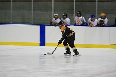 Millbrook Hockey 1-18-2009