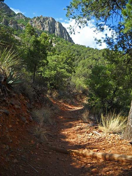 Laguna-Meadow-Trail-2.jpg