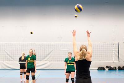 NTNUI Volleyball