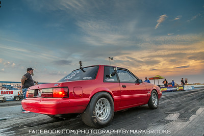 Red Fox Body Mustang