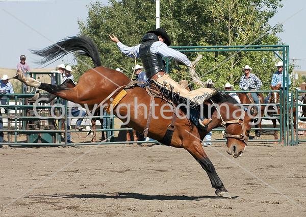 2006 Pincher Creek Pro Rodeo