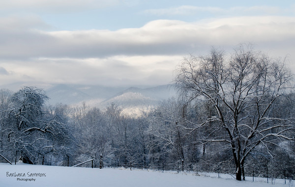 Winter Snow-Candler, North Carolina