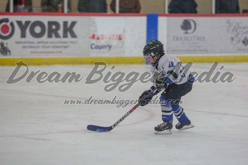 Blizzard Hockey 111719 7730.jpg