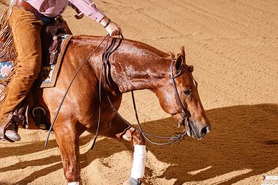 Wednesday Novice Horse Set 17 128-135