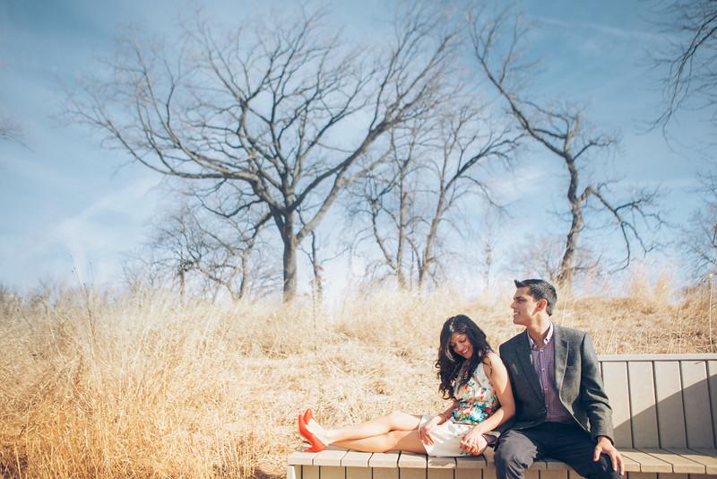 Le Cape Weddings - Trisha and Sashin Engagements_-46.jpg