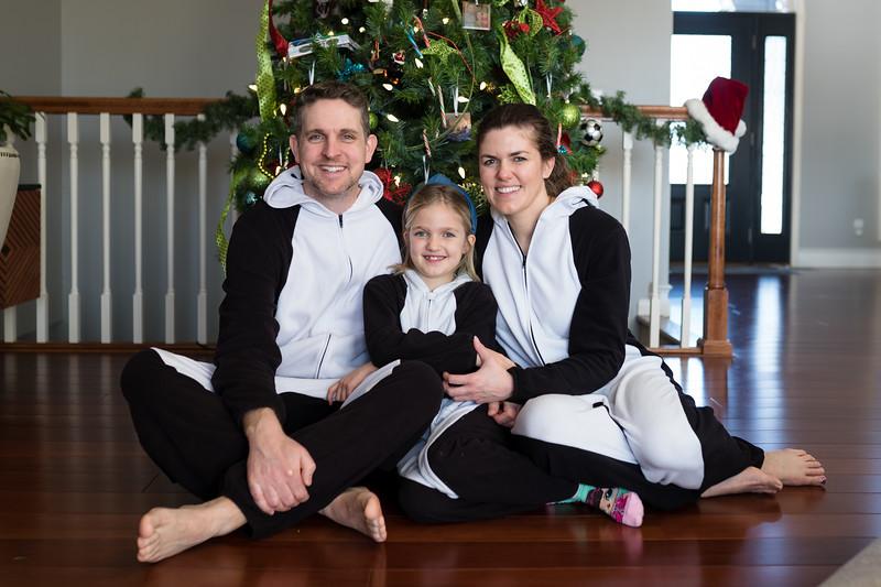 family pics 2019 christmas-4.jpg