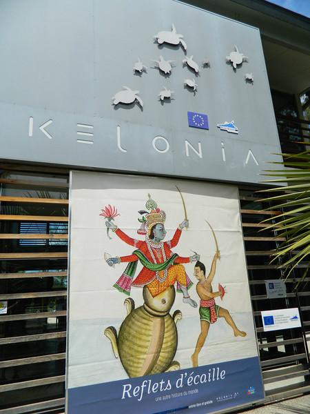 Kelonia - the sea turtle conservancy.