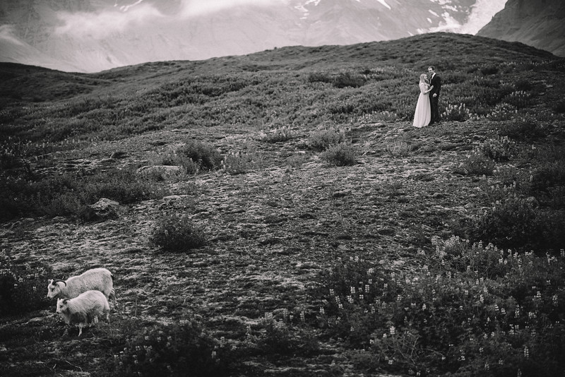 Iceland NYC Chicago International Travel Wedding Elopement Photographer - Kim Kevin22.jpg