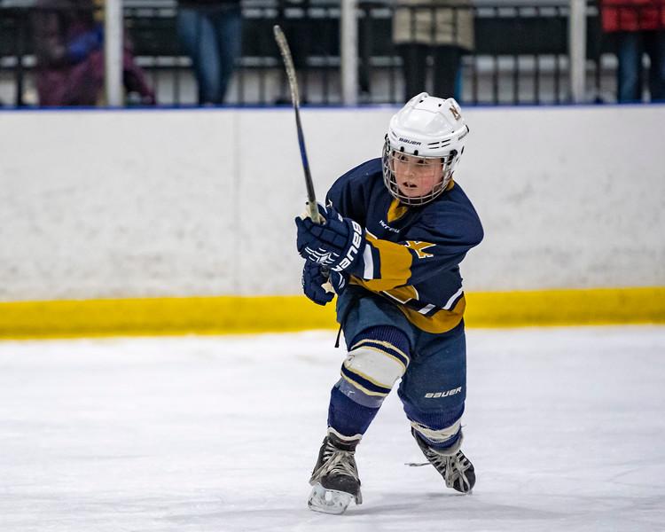 2019-02-03-Ryan-Naughton-Hockey-53.jpg