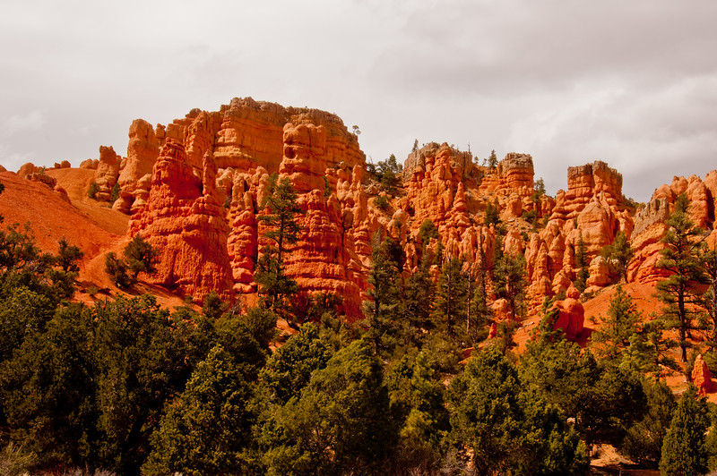 Bryce Canyon (3 of 26)