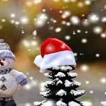2021 Walking Tree Winter Wonderland Program