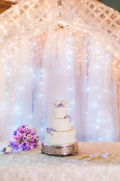 ELP0312 DeRoxtro Oak-K Farm Lakeland wedding-1705.jpg