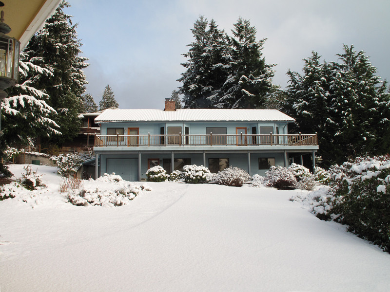 First snow of 2012. Freeland, Whidbey Island. January 17, 2012.  Afternoon sun.