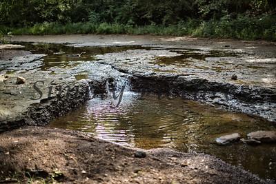 Banita Creek  (22)
