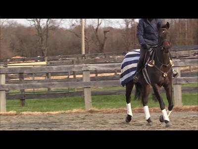 TSRC 2018-11-14 Tru Liberty Farm Video