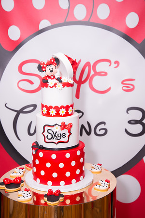 Skye's 3rd Birthday Party