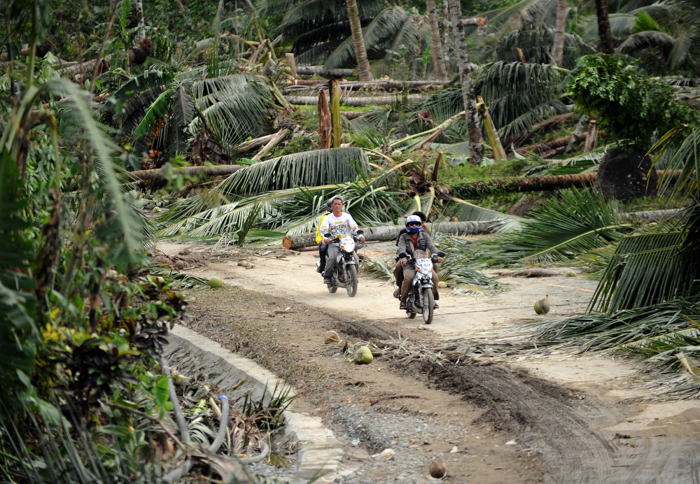 Description of . Motorists ride past fallen coconut trees along a highway in New Bataan town, Compostela Valley province on December 5, 2012, a day after Typhoon Bopha hit the province. At least 274 people have been killed and hundreds remain missing in the Philippines from the deadliest typhoon to hit the country this year, the civil defence chief said December 5.  TED ALJIBE/AFP/Getty Images
