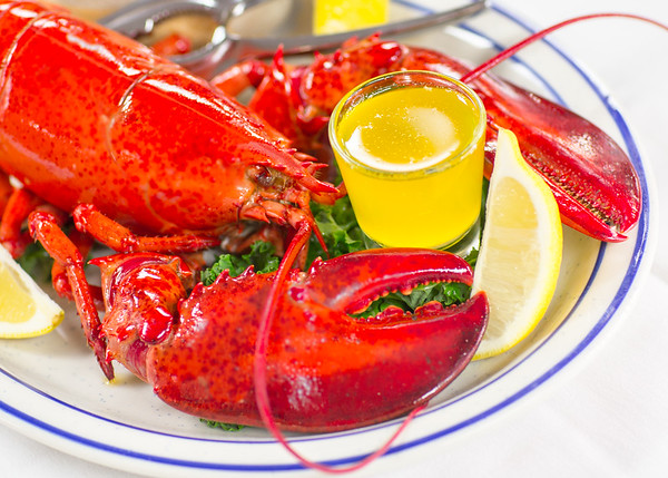 Rudee Lobster Photo for Marketing