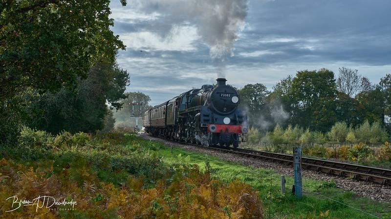 Bluebell Railway - Giants of Steam-87414 - 10-23 am.jpg
