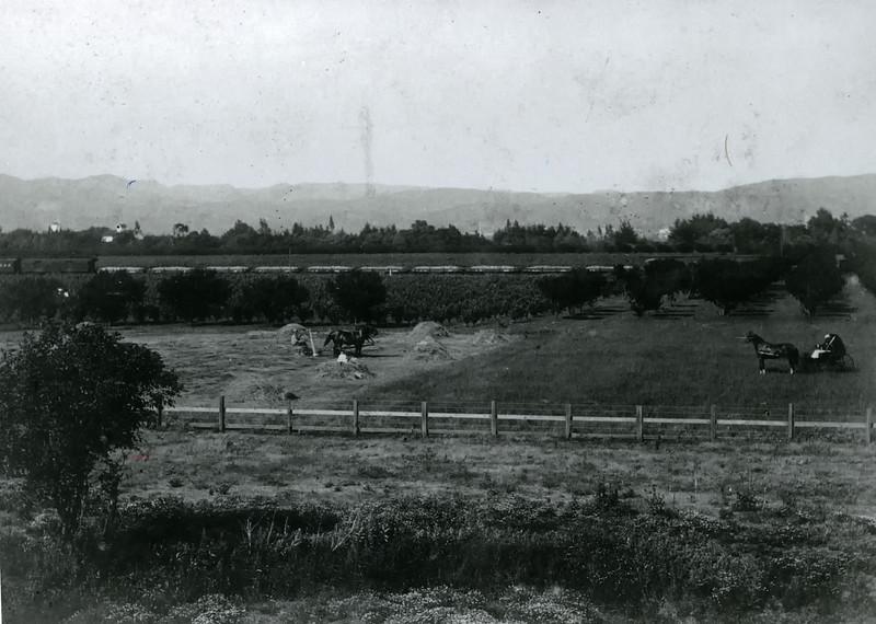 The old railroad that ran between Catarina, Kiser, Green Acres, 4 Corners, etc.