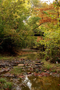Lanana Creek030