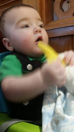 20140928 Nugget banana