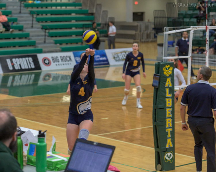 Volleyball UofA Pandas vs UBC Thunderbirds