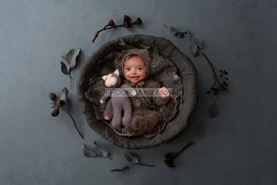 Baby Boy3