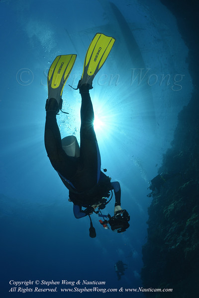 Diver Candy 01 0806 Stephen WONG.jpg