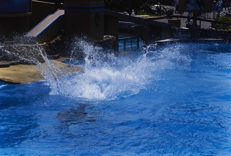 Seaworld 86_21.jpg