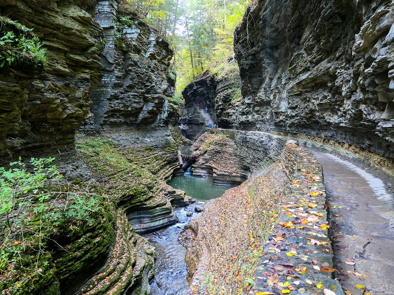 The Gorge at Watkins Glen State Park