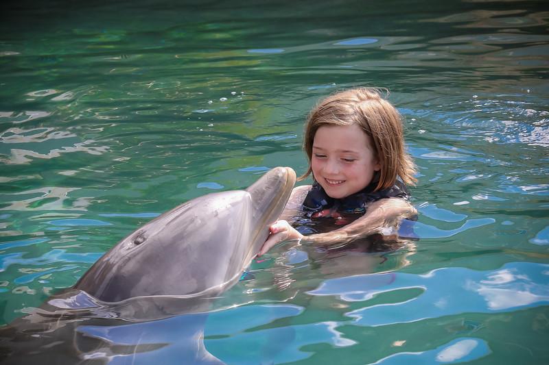 2019 August Dolphin Quest-28.jpg
