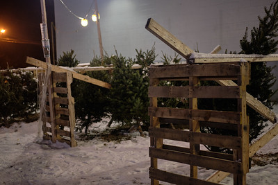 Schick Family Christmas Tree Tradition