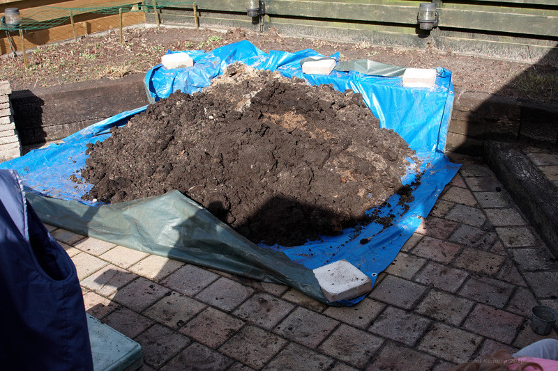 Er komt heel wat zand uit de gaten, het grootste deel heb ik gelukkig kunnen verdelen over de tuin