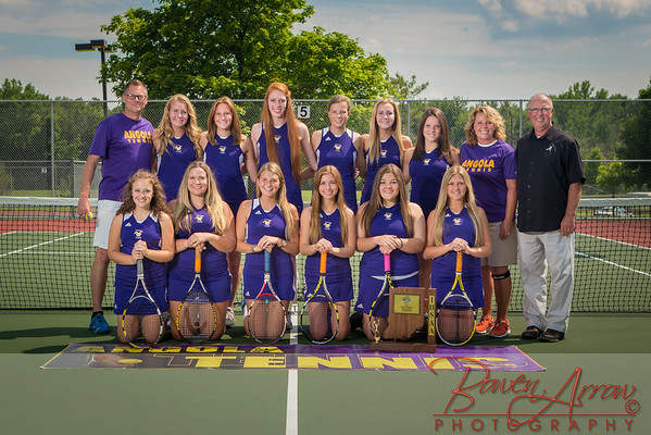 2014 W Tennis Sectional Photo